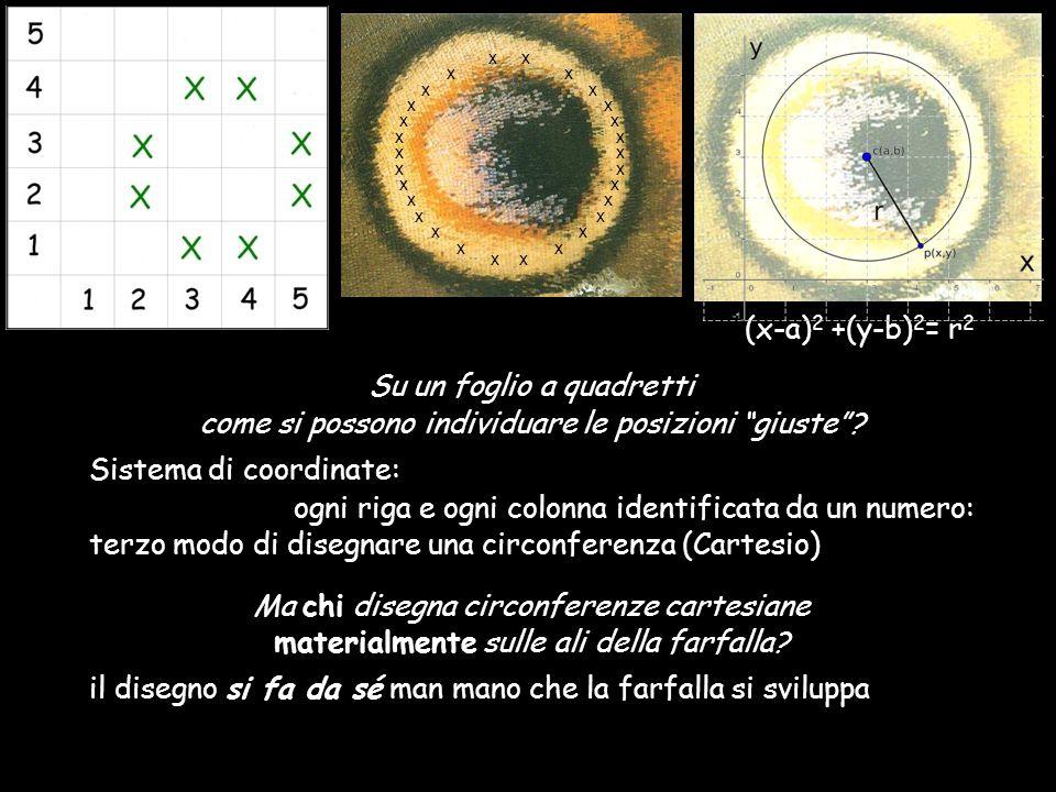 (x-a) 2 +(y-b) 2 = r 2 Su un foglio a quadretti come si possono individuare le posizioni giuste? Sistema di coordinate: ogni riga e ogni colonna ident