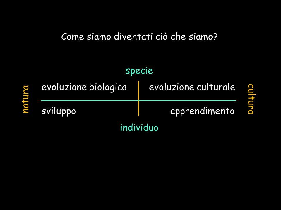 Come siamo diventati ciò che siamo? specie evoluzione biologica evoluzione culturale sviluppo apprendimento individuo natura cultura