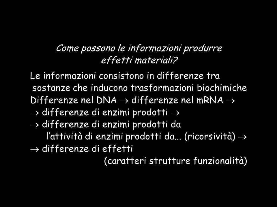 Come possono le informazioni produrre effetti materiali? Le informazioni consistono in differenze tra sostanze che inducono trasformazioni biochimiche