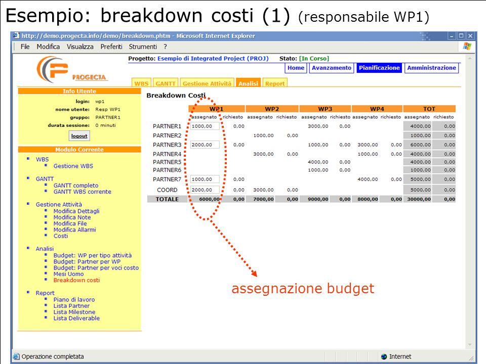 11 Esempio: breakdown costi (1) (responsabile WP1) assegnazione budget