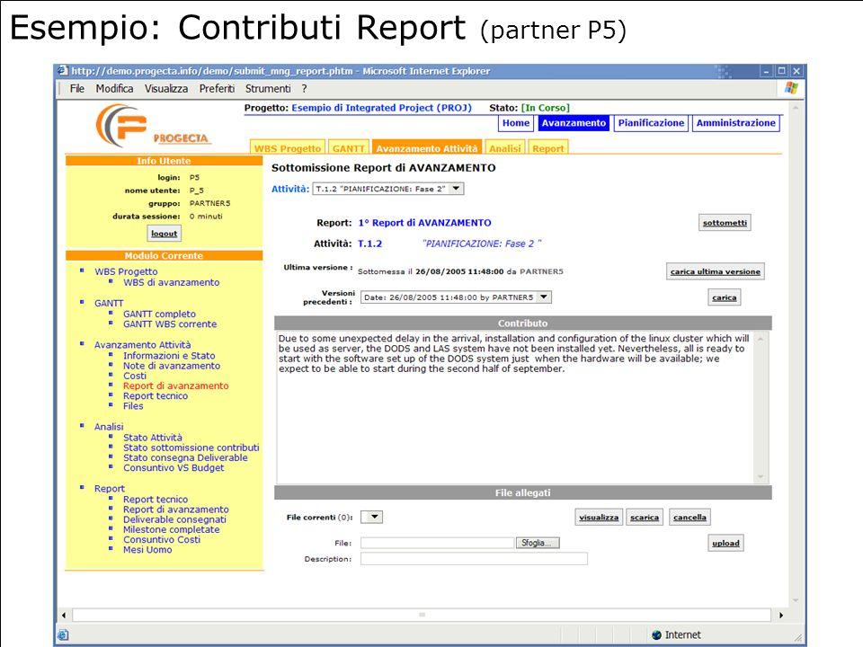 19 Esempio: Contributi Report (partner P5)