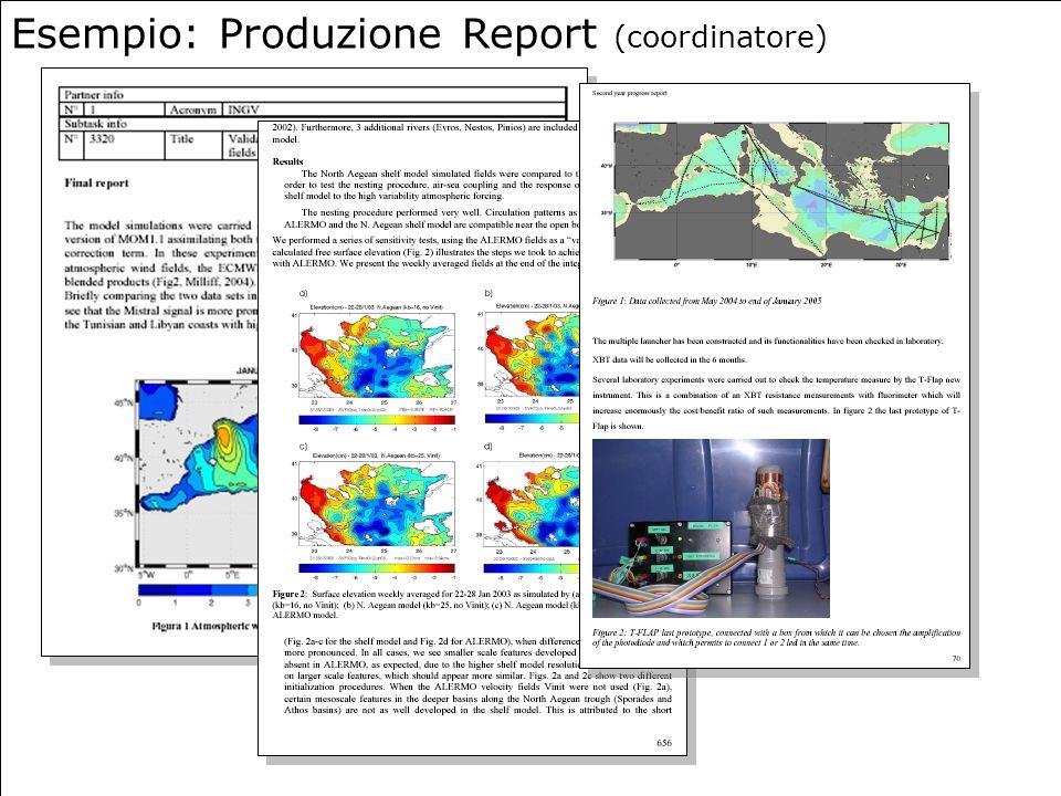 20 Esempio: Produzione Report (coordinatore)
