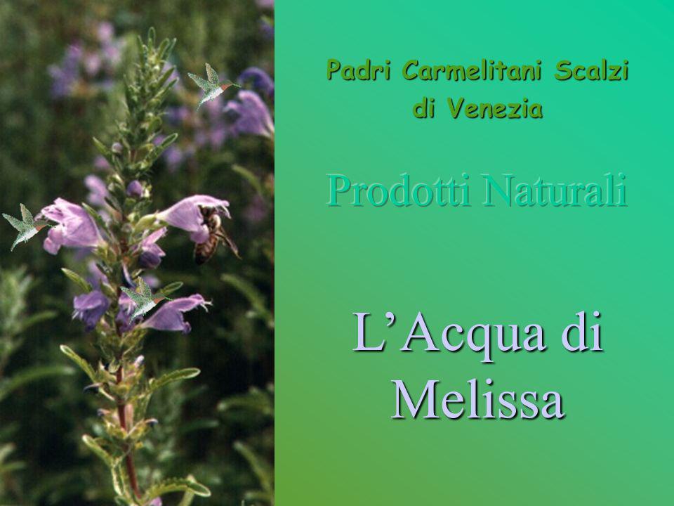 Dal 1710 i Padri Carmelitani Scalzi di Venezia distillano, secondo lantico metodo, lAcqua di Melissa, prodotto di erboristeria che ha come base la melissa moldavica (Dracocephalum Moldavicum).