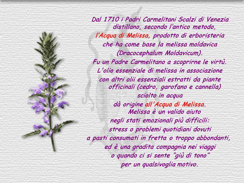 Dal 1710 i Padri Carmelitani Scalzi di Venezia distillano, secondo lantico metodo, lAcqua di Melissa, prodotto di erboristeria che ha come base la mel
