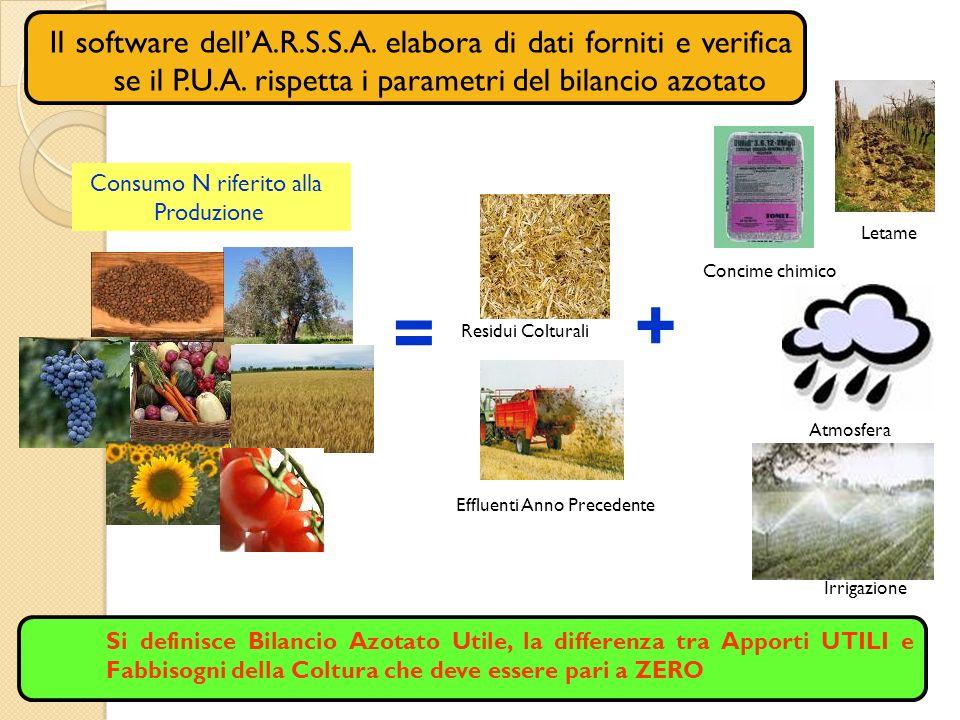 Il software dellA.R.S.S.A. elabora di dati forniti e verifica se il P.U.A. rispetta i parametri del bilancio azotato Consumo N riferito alla Produzion