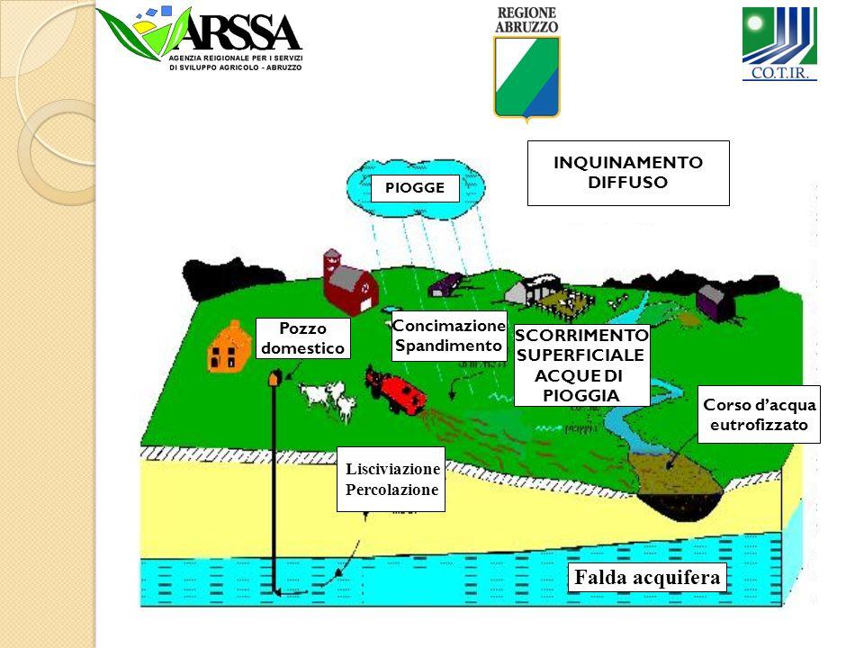 Quali sono le possibili Fonti di inquinamento Agricolo? INQUINAMENTO DIFFUSO Pozzo domestico Concimazione Spandimento SCORRIMENTO SUPERFICIALE ACQUE D
