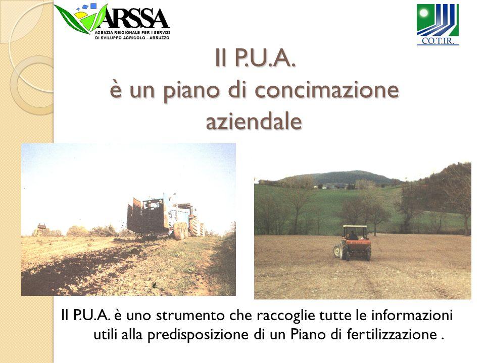 Soggetti obbligati a fare Tutte le aziende agricole iscritte alla CCIAA, i cui terreni, a qualsiasi titolo posseduti, ricadano nelle zone designate vulnerabili da nitrati di origine agricola.