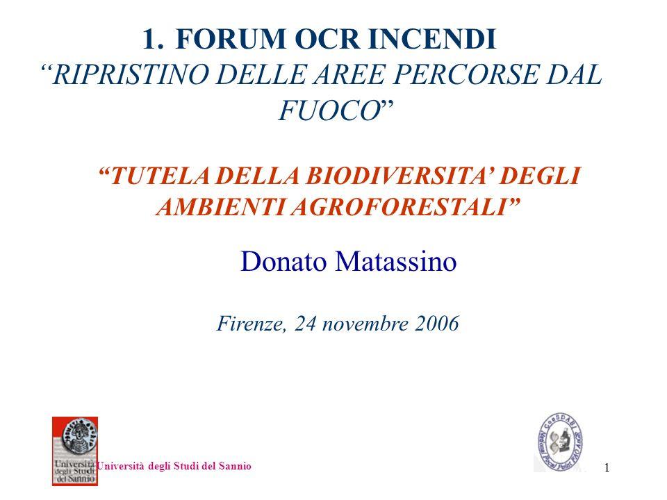 1 Donato Matassino Università degli Studi del Sannio TUTELA DELLA BIODIVERSITA DEGLI AMBIENTI AGROFORESTALI 1.FORUM OCR INCENDI RIPRISTINO DELLE AREE