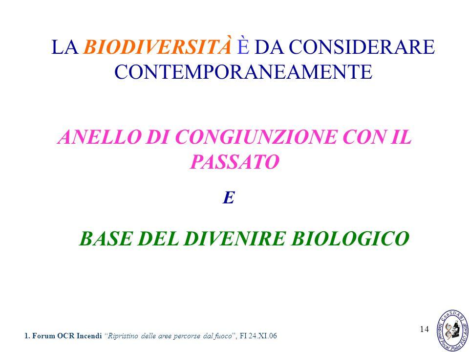 14 ANELLO DI CONGIUNZIONE CON IL PASSATO BASE DEL DIVENIRE BIOLOGICO LA BIODIVERSITÀ È DA CONSIDERARE CONTEMPORANEAMENTE E 1. Forum OCR Incendi Ripris
