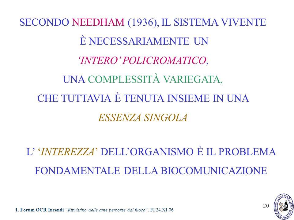 20 SECONDO NEEDHAM (1936), IL SISTEMA VIVENTE È NECESSARIAMENTE UN INTERO POLICROMATICO, UNA COMPLESSITÀ VARIEGATA, CHE TUTTAVIA È TENUTA INSIEME IN U
