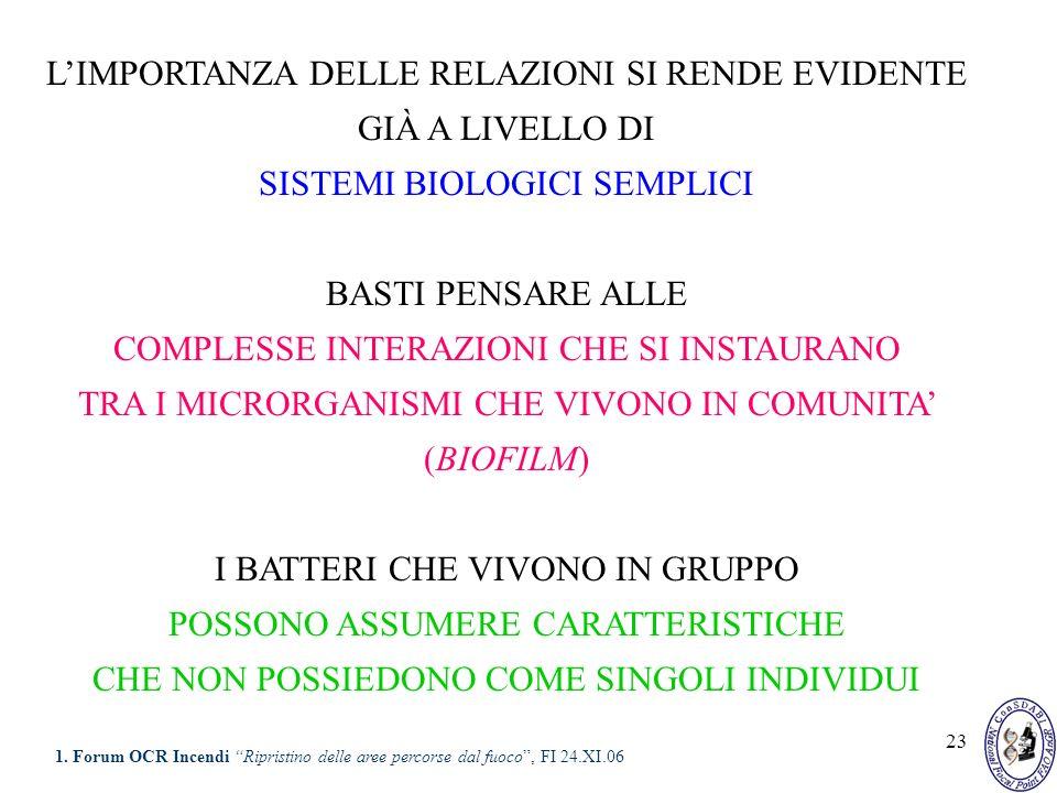 23 LIMPORTANZA DELLE RELAZIONI SI RENDE EVIDENTE GIÀ A LIVELLO DI SISTEMI BIOLOGICI SEMPLICI BASTI PENSARE ALLE COMPLESSE INTERAZIONI CHE SI INSTAURAN