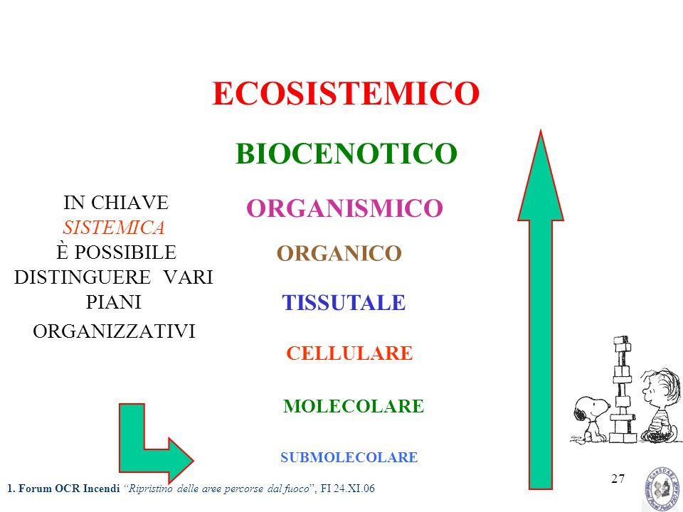 27 IN CHIAVE SISTEMICA È POSSIBILE DISTINGUERE VARI PIANI ORGANIZZATIVI SUBMOLECOLARE MOLECOLARE CELLULARE TISSUTALE ORGANICO ORGANISMICO BIOCENOTICO