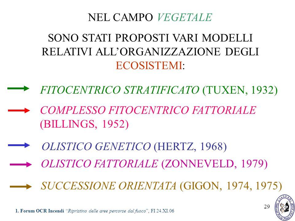 29 FITOCENTRICO STRATIFICATO (TUXEN, 1932) OLISTICO GENETICO (HERTZ, 1968) COMPLESSO FITOCENTRICO FATTORIALE (BILLINGS, 1952) NEL CAMPO VEGETALE SONO