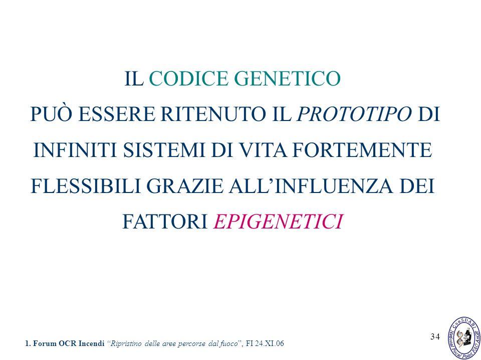 34 IL CODICE GENETICO PUÒ ESSERE RITENUTO IL PROTOTIPO DI INFINITI SISTEMI DI VITA FORTEMENTE FLESSIBILI GRAZIE ALLINFLUENZA DEI FATTORI EPIGENETICI 1
