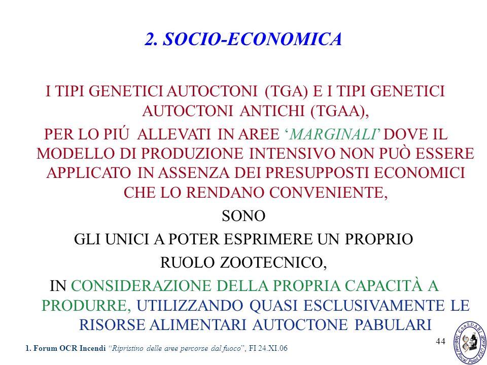 44 2. SOCIO-ECONOMICA I TIPI GENETICI AUTOCTONI (TGA) E I TIPI GENETICI AUTOCTONI ANTICHI (TGAA), PER LO PIÚ ALLEVATI IN AREE MARGINALI DOVE IL MODELL