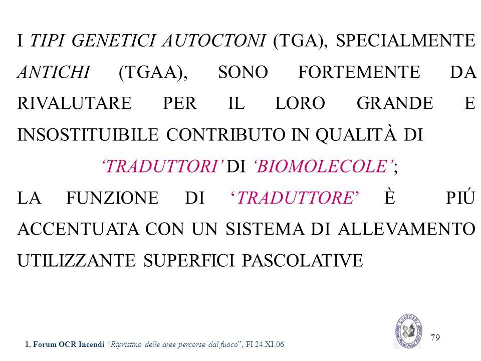 79 I TIPI GENETICI AUTOCTONI (TGA), SPECIALMENTE ANTICHI (TGAA), SONO FORTEMENTE DA RIVALUTARE PER IL LORO GRANDE E INSOSTITUIBILE CONTRIBUTO IN QUALI
