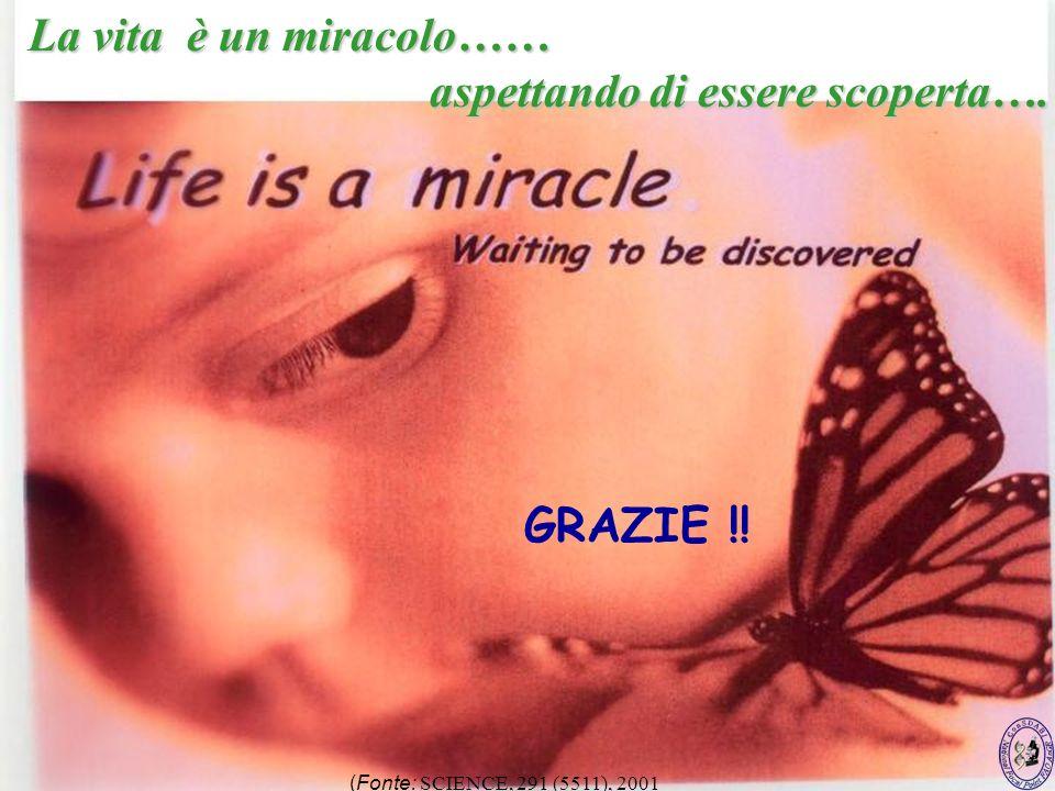 97 La vita è un miracolo…… aspettando di essere scoperta…. aspettando di essere scoperta…. (Fonte: SCIENCE, 291 (5511), 2001 GRAZIE !!