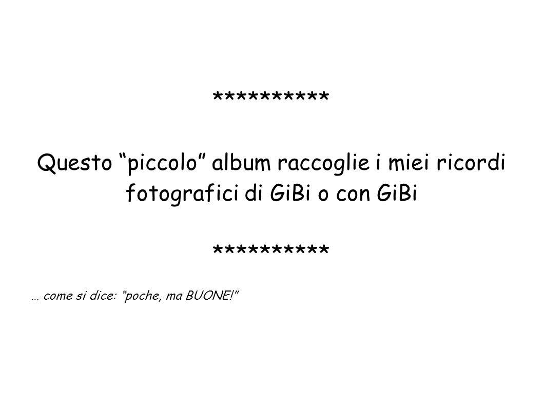 ********** Questo piccolo album raccoglie i miei ricordi fotografici di GiBi o con GiBi ********** … come si dice: poche, ma BUONE!