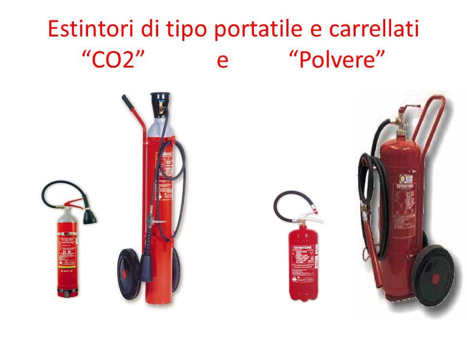 Estintori di tipo portatile e carrellati CO2 e Polvere