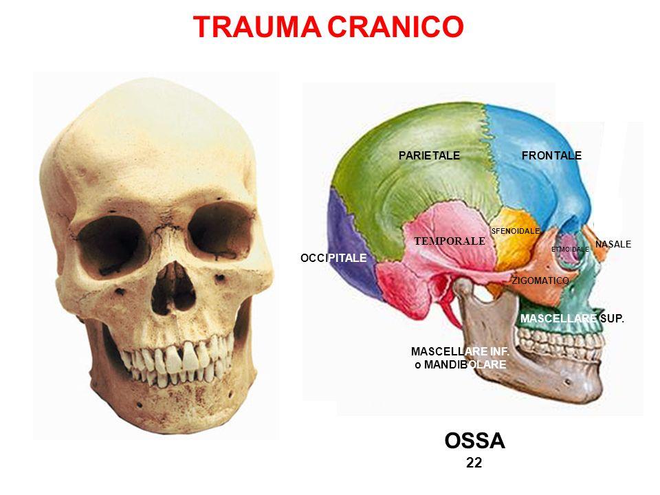TRAUMA CRANICO OCCIPITALE TEMPORALE PARIETALEFRONTALE MASCELLARE INF. o MANDIBOLARE MASCELLARE SUP. ZIGOMATICO ETMOIDALE SFENOIDALE NASALE OSSA 22