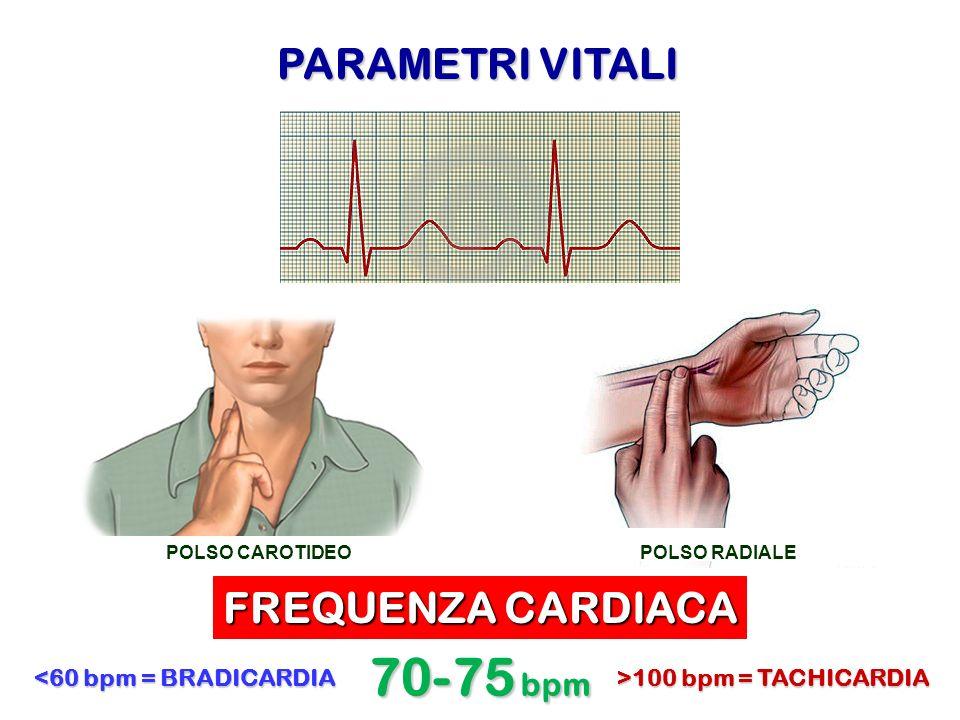 PARAMETRI VITALI FREQUENZA CARDIACA 70-75 bpm >100 bpm = TACHICARDIA <60 bpm = BRADICARDIA POLSO CAROTIDEOPOLSO RADIALE