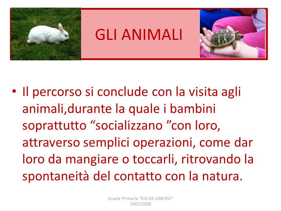 GLI ANIMALI Il percorso si conclude con la visita agli animali,durante la quale i bambini soprattutto socializzano con loro, attraverso semplici opera