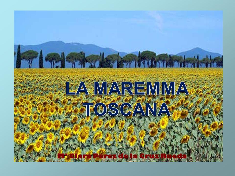 LA MAREMMA TOSCANA La Maremma Toscana è situata nella parte meridionale della Toscana e nella parte settentrionale del Lazio.