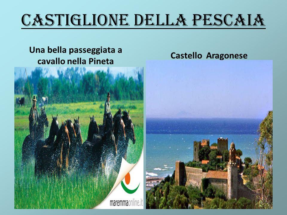 Castiglione della Pescaia Una bella passeggiata a cavallo nella Pineta Castello Aragonese