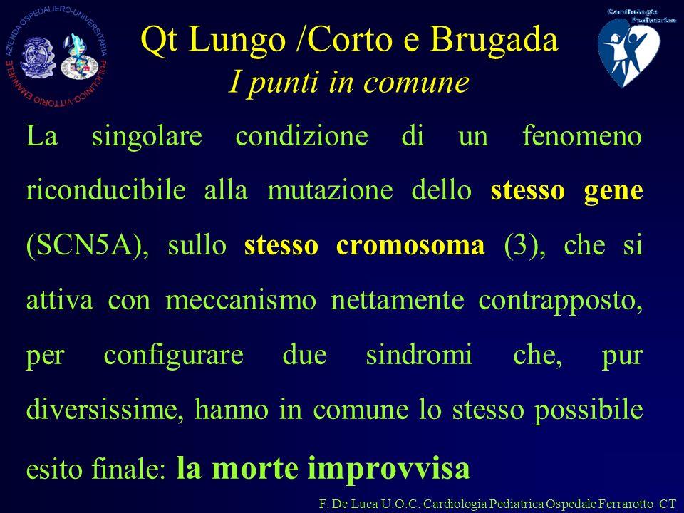 F. De Luca U.O.C. Cardiologia Pediatrica Ospedale Ferrarotto CT Qt Lungo /Corto e Brugada I punti in comune La singolare condizione di un fenomeno ric
