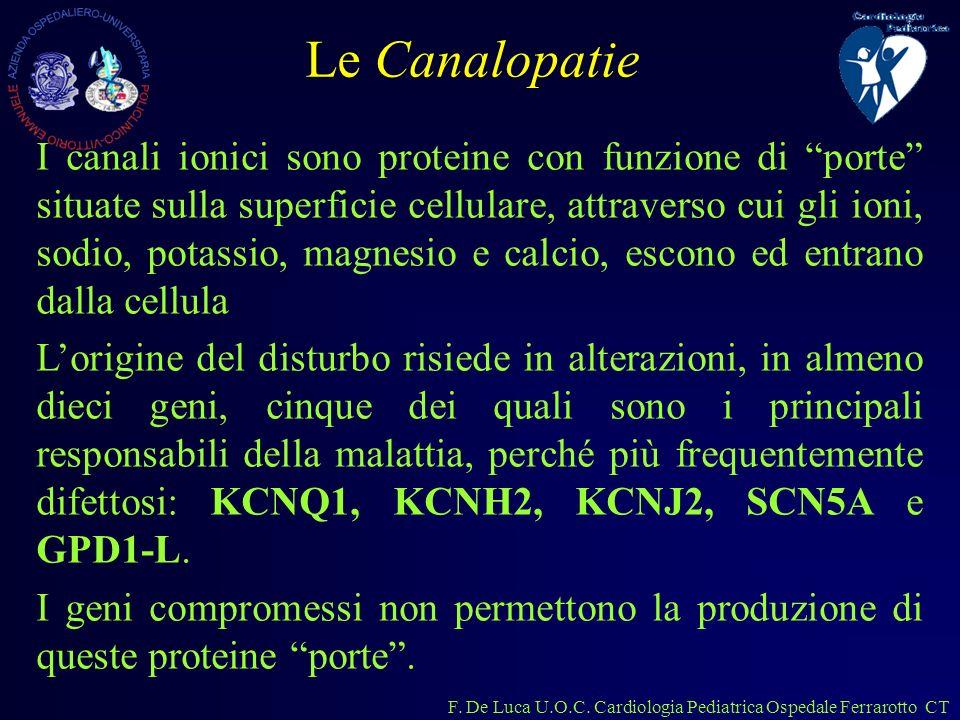 F. De Luca U.O.C. Cardiologia Pediatrica Ospedale Ferrarotto CT I canali ionici sono proteine con funzione di porte situate sulla superficie cellulare