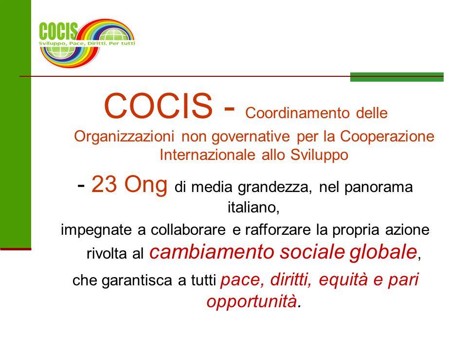 COCIS - Coordinamento delle Organizzazioni non governative per la Cooperazione Internazionale allo Sviluppo - 23 Ong di media grandezza, nel panorama