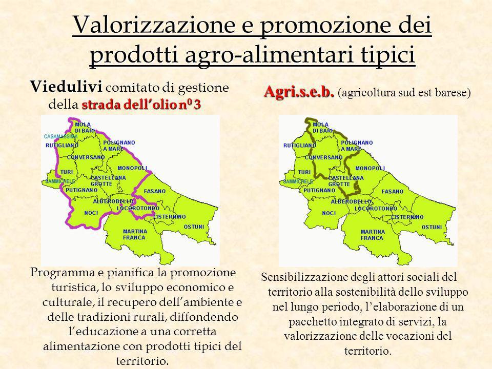 Valorizzazione e promozione dei prodotti agro-alimentari tipici Viedulivi strada dellolio n 0 3 Viedulivi comitato di gestione della strada dellolio n