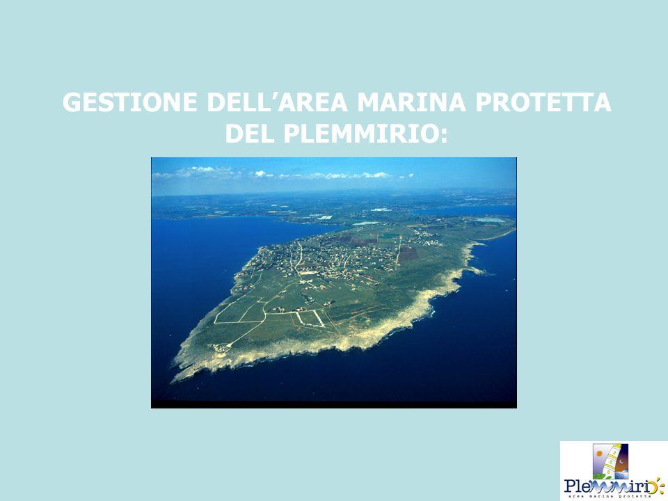 GESTIONE DELLAREA MARINA PROTETTA DEL PLEMMIRIO: