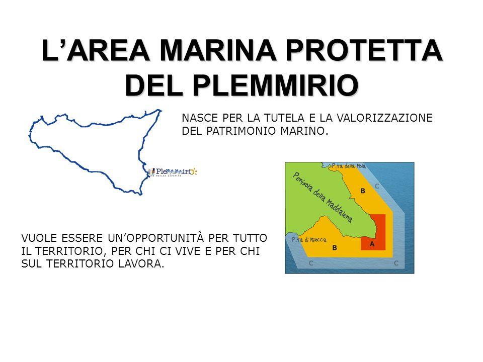 LAREA MARINA PROTETTA DEL PLEMMIRIO NASCE PER LA TUTELA E LA VALORIZZAZIONE DEL PATRIMONIO MARINO.