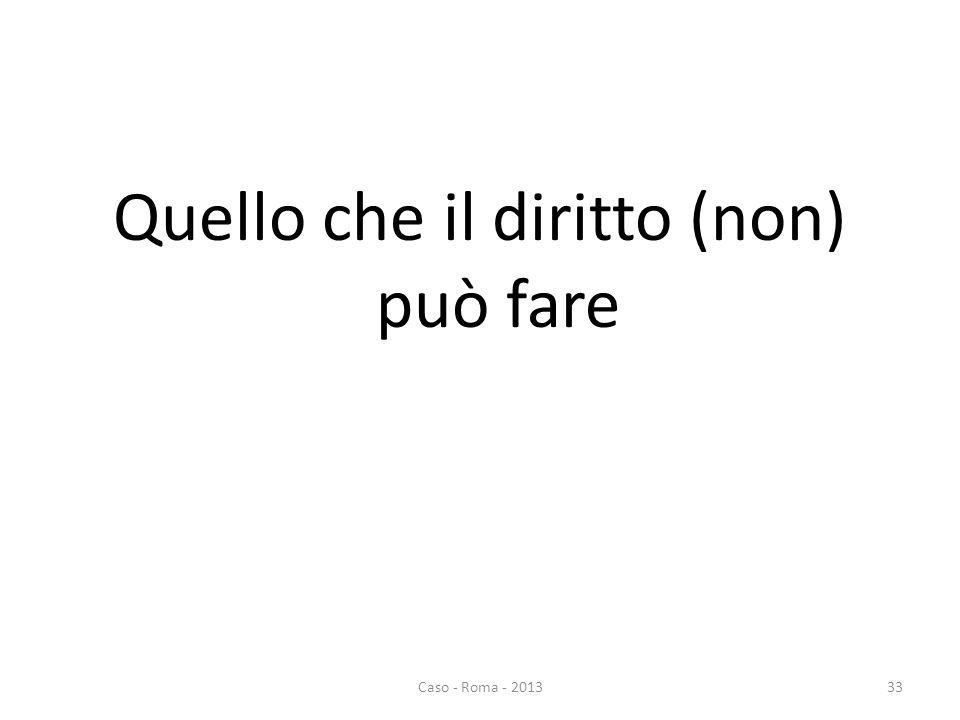 Quello che il diritto (non) può fare 33Caso - Roma - 2013