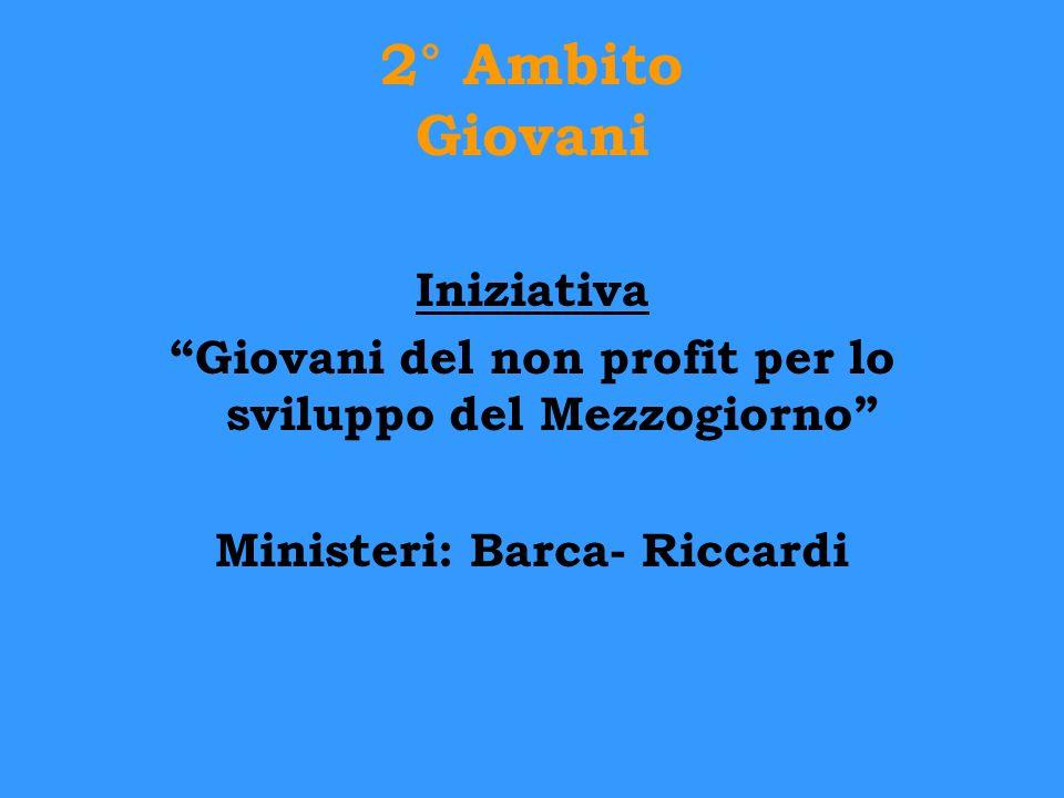 2° Ambito Giovani Iniziativa Giovani del non profit per lo sviluppo del Mezzogiorno Ministeri: Barca- Riccardi