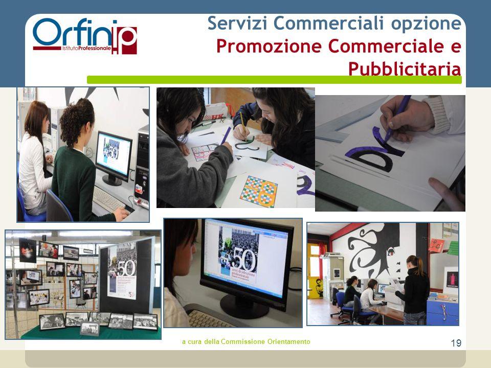 19 Servizi Commerciali opzione Promozione Commerciale e Pubblicitaria a cura della Commissione Orientamento