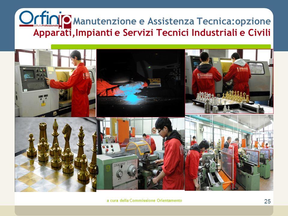 25 Manutenzione e Assistenza Tecnica:opzione Apparati,Impianti e Servizi Tecnici Industriali e Civili a cura della Commissione Orientamento