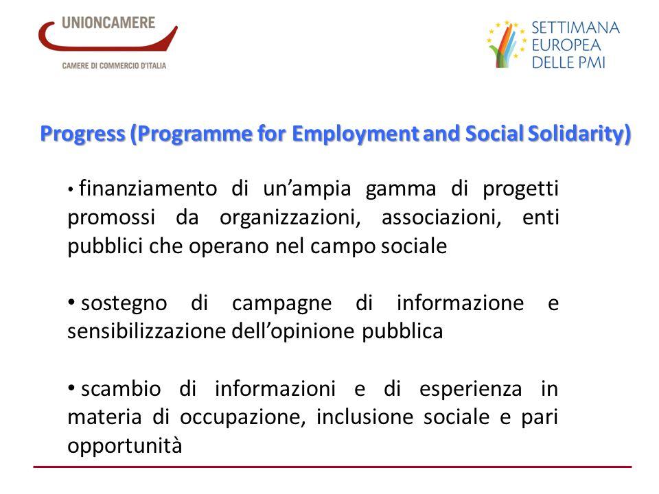Progress (Programme for Employment and Social Solidarity) finanziamento di unampia gamma di progetti promossi da organizzazioni, associazioni, enti pu