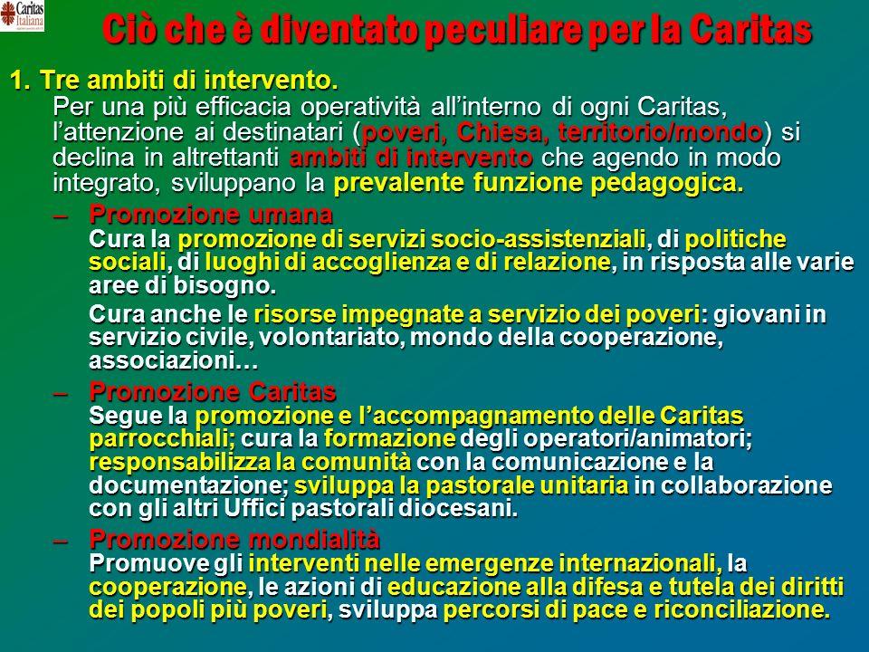 Ciò che è diventato peculiare per la Caritas 1. Tre ambiti di intervento. Per una più efficacia operatività allinterno di ogni Caritas, lattenzione ai