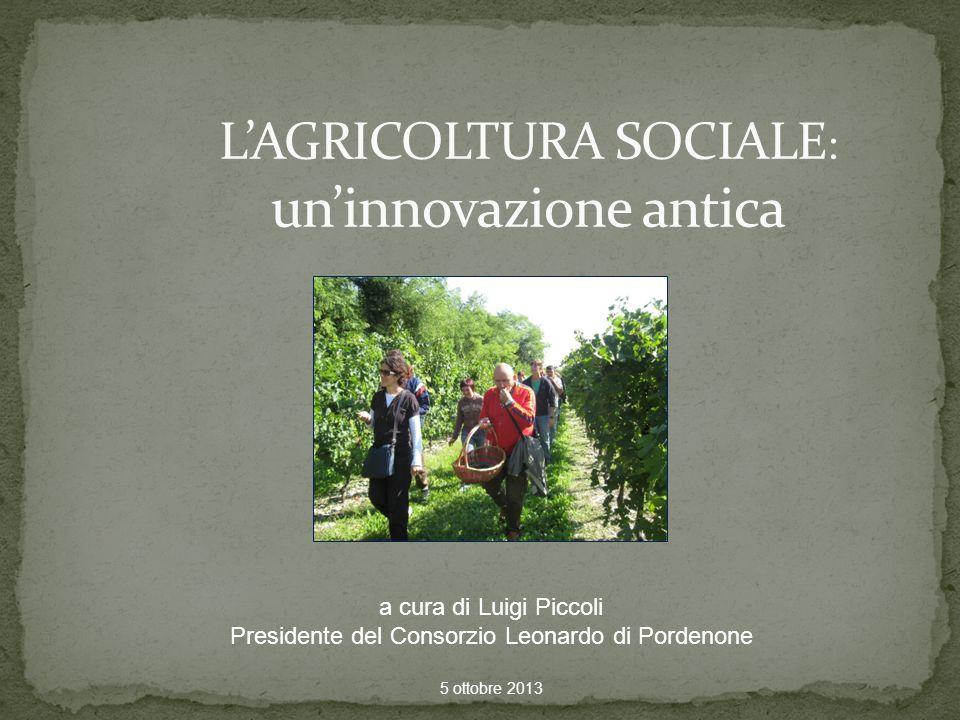 a cura di Luigi Piccoli Presidente del Consorzio Leonardo di Pordenone 5 ottobre 2013