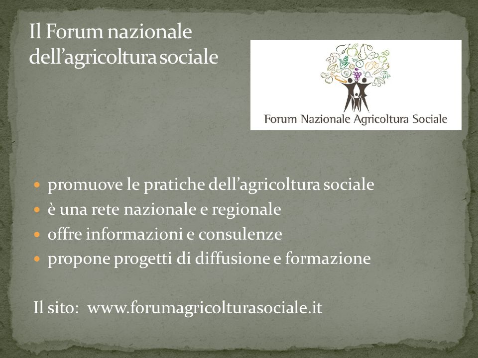 promuove le pratiche dellagricoltura sociale è una rete nazionale e regionale offre informazioni e consulenze propone progetti di diffusione e formazione Il sito: www.forumagricolturasociale.it