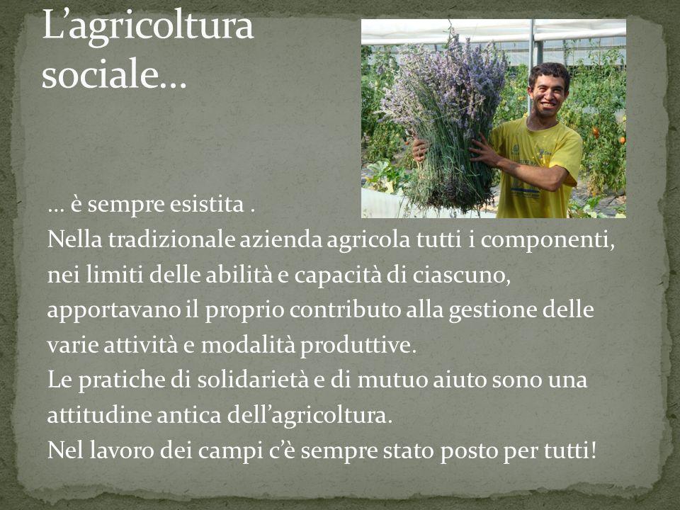 … coniuga laspetto multifunzionale delle attività agricole alla produzione di ben-essere per la comunità locale e ad azioni di rilevanza sociale nei confronti di persone in condizioni di disagio