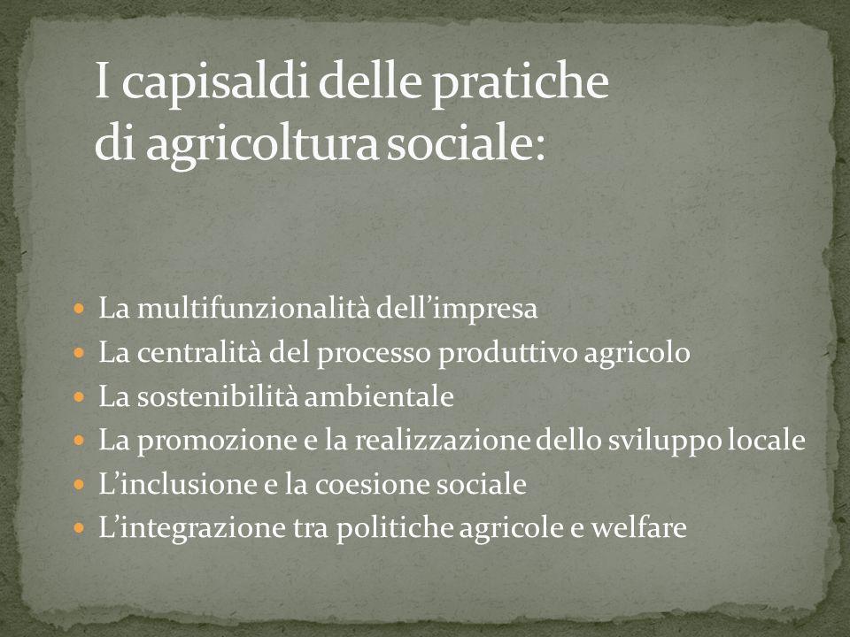 La multifunzionalità dellimpresa La centralità del processo produttivo agricolo La sostenibilità ambientale La promozione e la realizzazione dello sviluppo locale Linclusione e la coesione sociale Lintegrazione tra politiche agricole e welfare