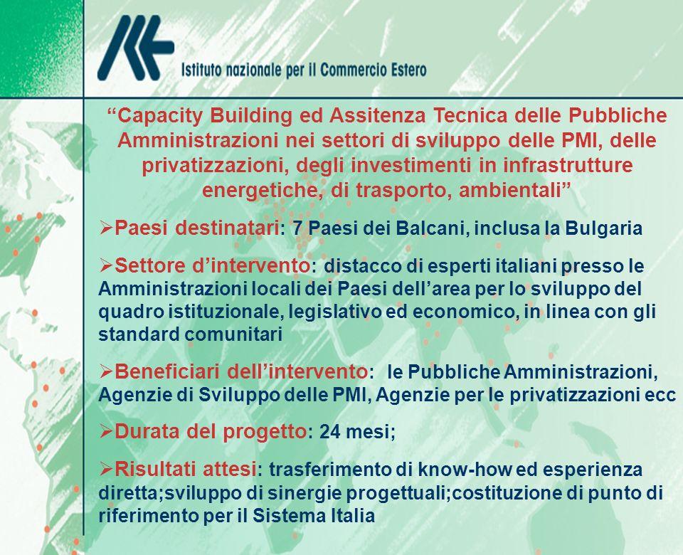 Capacity Building ed Assitenza Tecnica delle Pubbliche Amministrazioni nei settori di sviluppo delle PMI, delle privatizzazioni, degli investimenti in