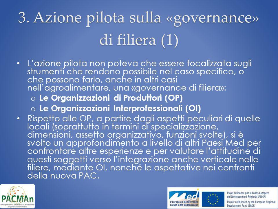 3. Azione pilota sulla «governance» di filiera (1) Lazione pilota non poteva che essere focalizzata sugli strumenti che rendono possibile nel caso spe