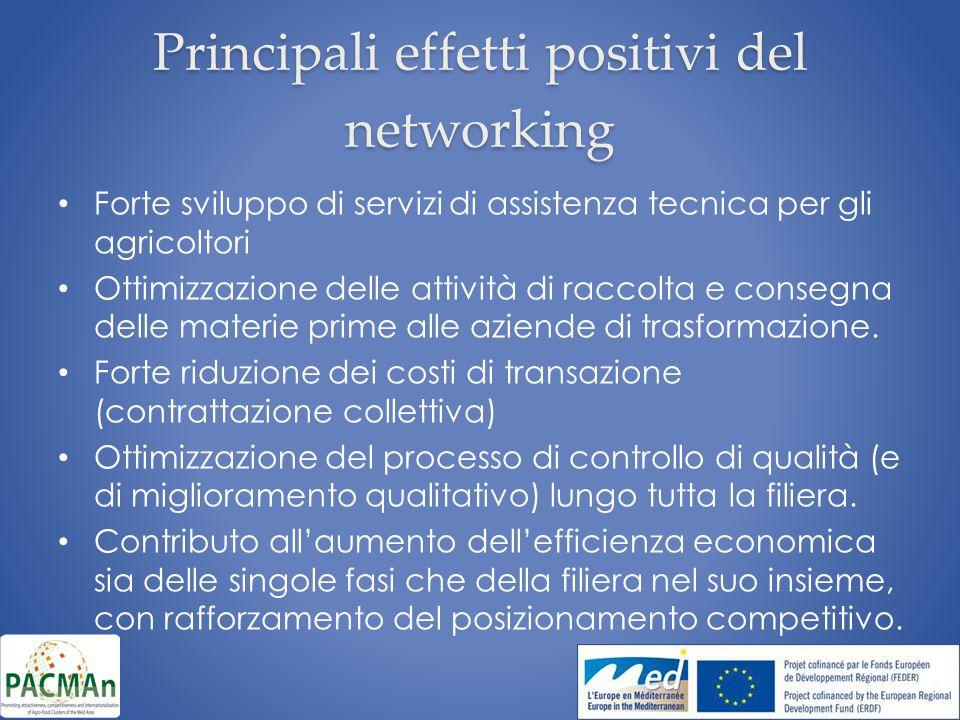 Principali effetti positivi del networking Forte sviluppo di servizi di assistenza tecnica per gli agricoltori Ottimizzazione delle attività di raccolta e consegna delle materie prime alle aziende di trasformazione.