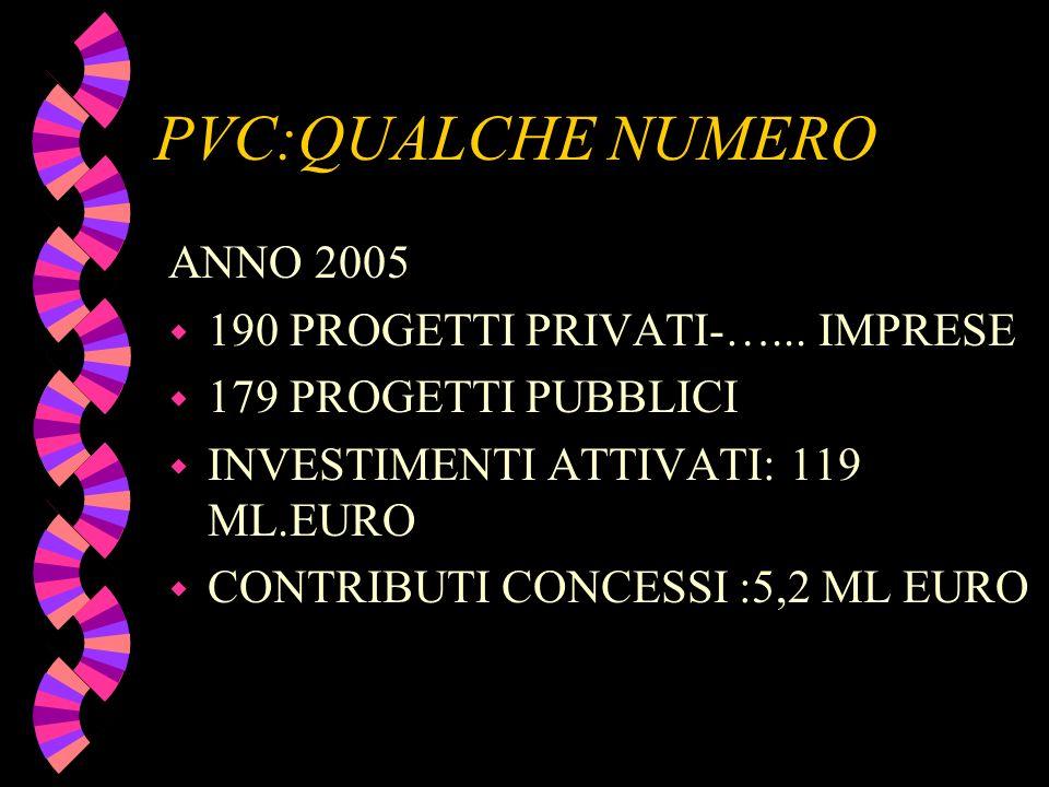 PVC:QUALCHE NUMERO ANNO 2005 w 190 PROGETTI PRIVATI-…... IMPRESE w 179 PROGETTI PUBBLICI w INVESTIMENTI ATTIVATI: 119 ML.EURO w CONTRIBUTI CONCESSI :5