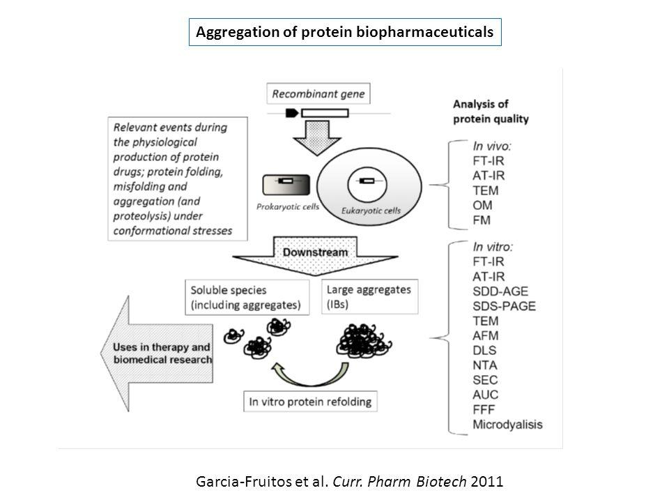 Aggregation of protein biopharmaceuticals Garcia-Fruitos et al. Curr. Pharm Biotech 2011