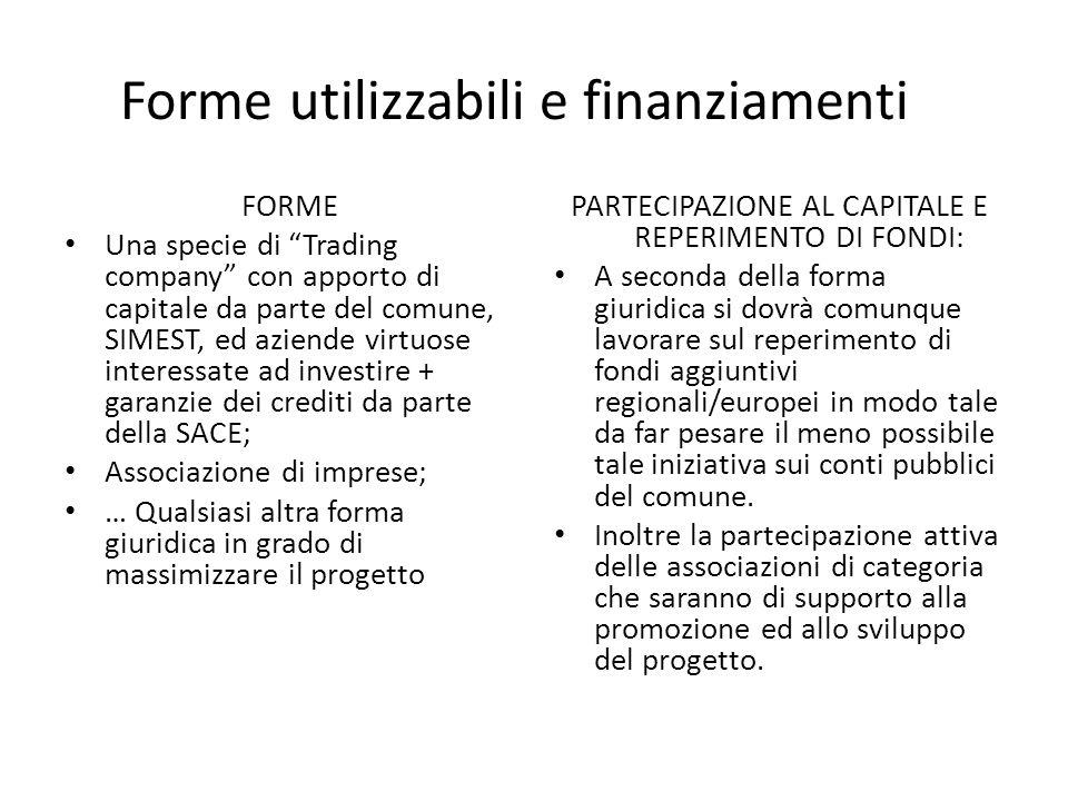Forme utilizzabili e finanziamenti FORME Una specie di Trading company con apporto di capitale da parte del comune, SIMEST, ed aziende virtuose intere